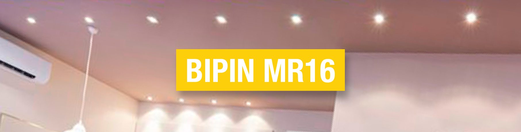 Bipin MR16